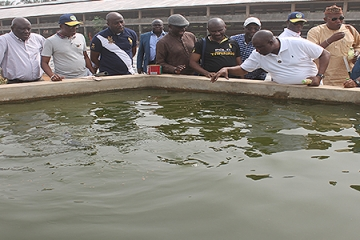 VISIT: LAGOS STATE DELEGATION TO SONGHAI OUANDO TO REVIVE COLLABORATION BETWEEN THE TWO PARTNERS